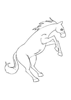Ausmalbilder Aufbäumendes Pferd Pferde Malvorlagen