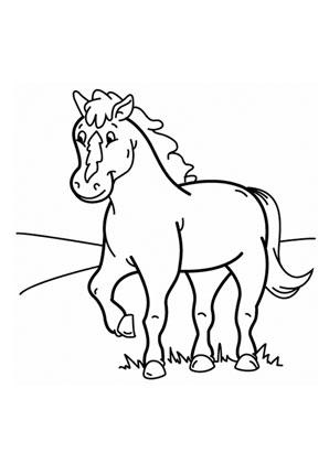 Ausmalbilder Fohlen auf der Wiese - Pferde Malvorlagen