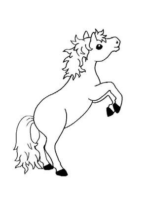 Ausmalbilder Fohlen Mit Brauner Mähne Pferde Malvorlagen