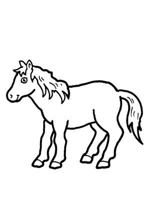 Ausmalbilder Fröhliches Pony Pferde Malvorlagen