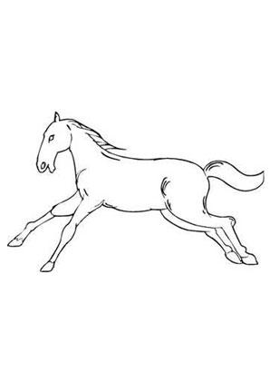 ausmalbilder galoppierendes pferd - pferde malvorlagen