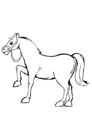 Ausmalbilder Kleines Pony - Pferde Malvorlagen