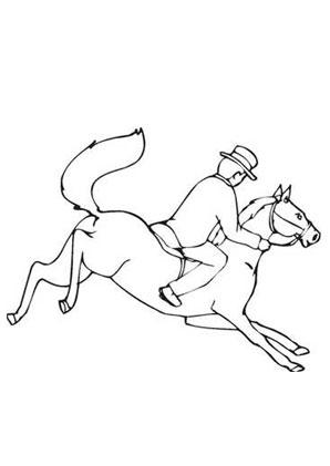 Ausmalbilder Pferd Geländeritt Pferde Malvorlagen