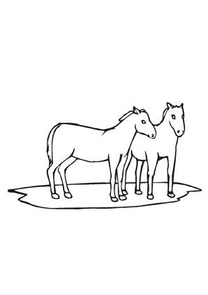 Ausmalbilder Pferde Auf Der Weide Pferde Malvorlagen