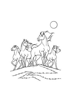 Ausmalbilder Pferdeherde Pferde Malvorlagen