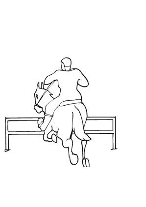 Ausmalbilder Springreiter Pferde Malvorlagen
